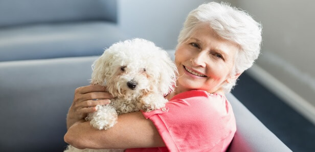 Rimadyl For Dogs: Uses, Side effects, Dosage, and Alternatives