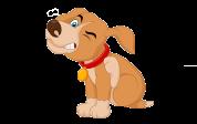 CBD Oil for Dog Allergies